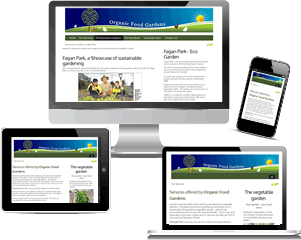 Responsive Websites - four reasons your business needs one
